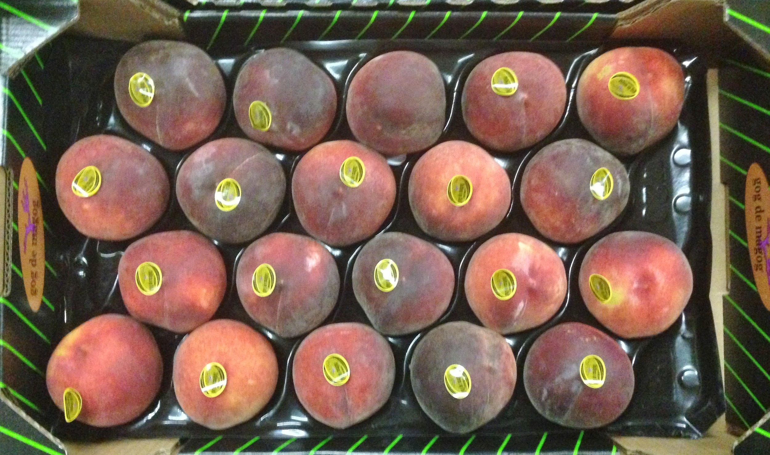 Magog Peaches.JPG