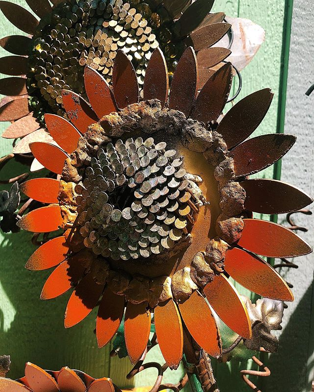 My newest creations, metal garden flowers. Each is unique and made of mostly upcycled materials.
