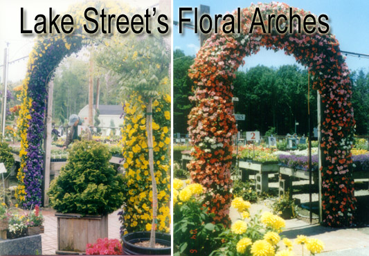 A trademark that is unique to Lake Street Garden Center is our custom made Floral Arches.  This Slideshow attempts to capture the beauty of our everchanging seasonal displays.