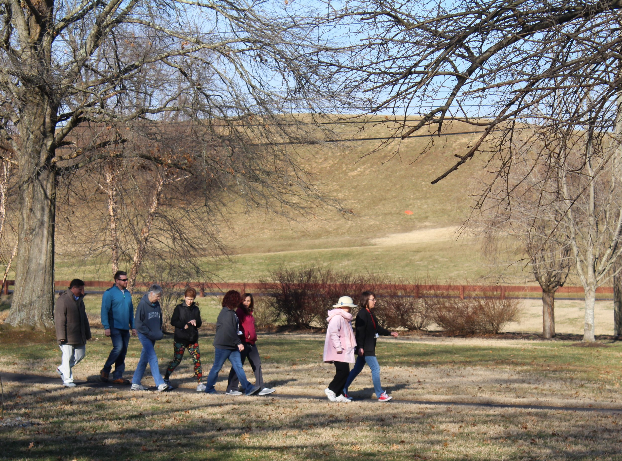 Walk with a Doc   Dr. Stiltner walking with citizens at Bristol Park in Waverly