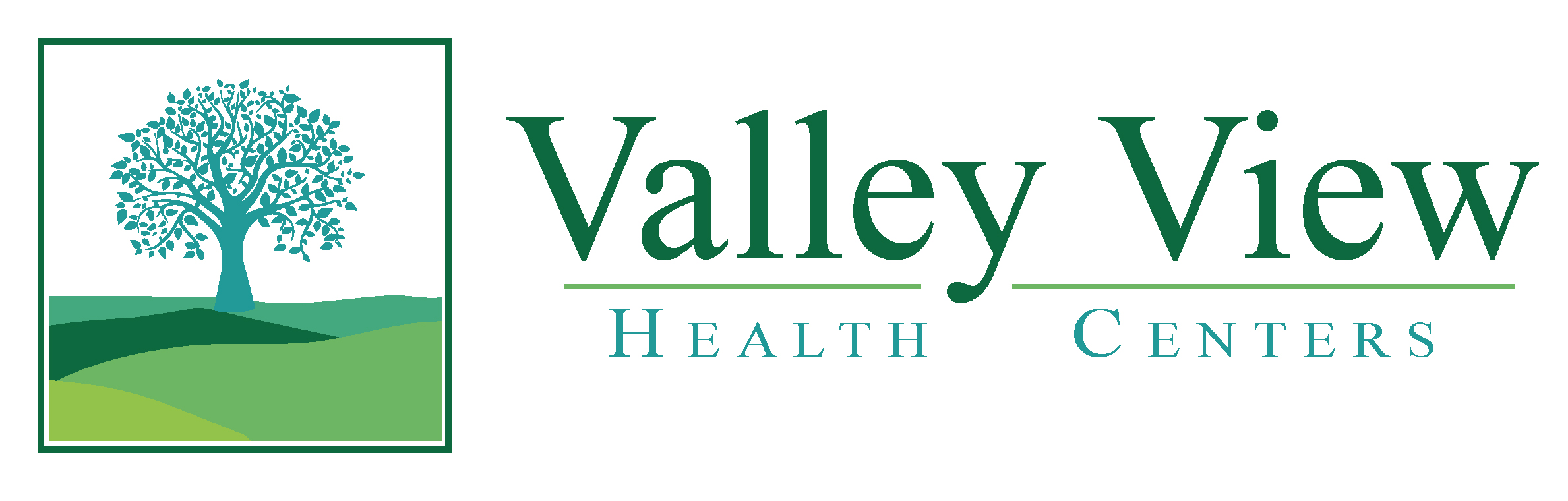 Valley View 2018 Logo-01-01.jpg