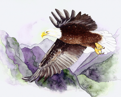 small eagle.png