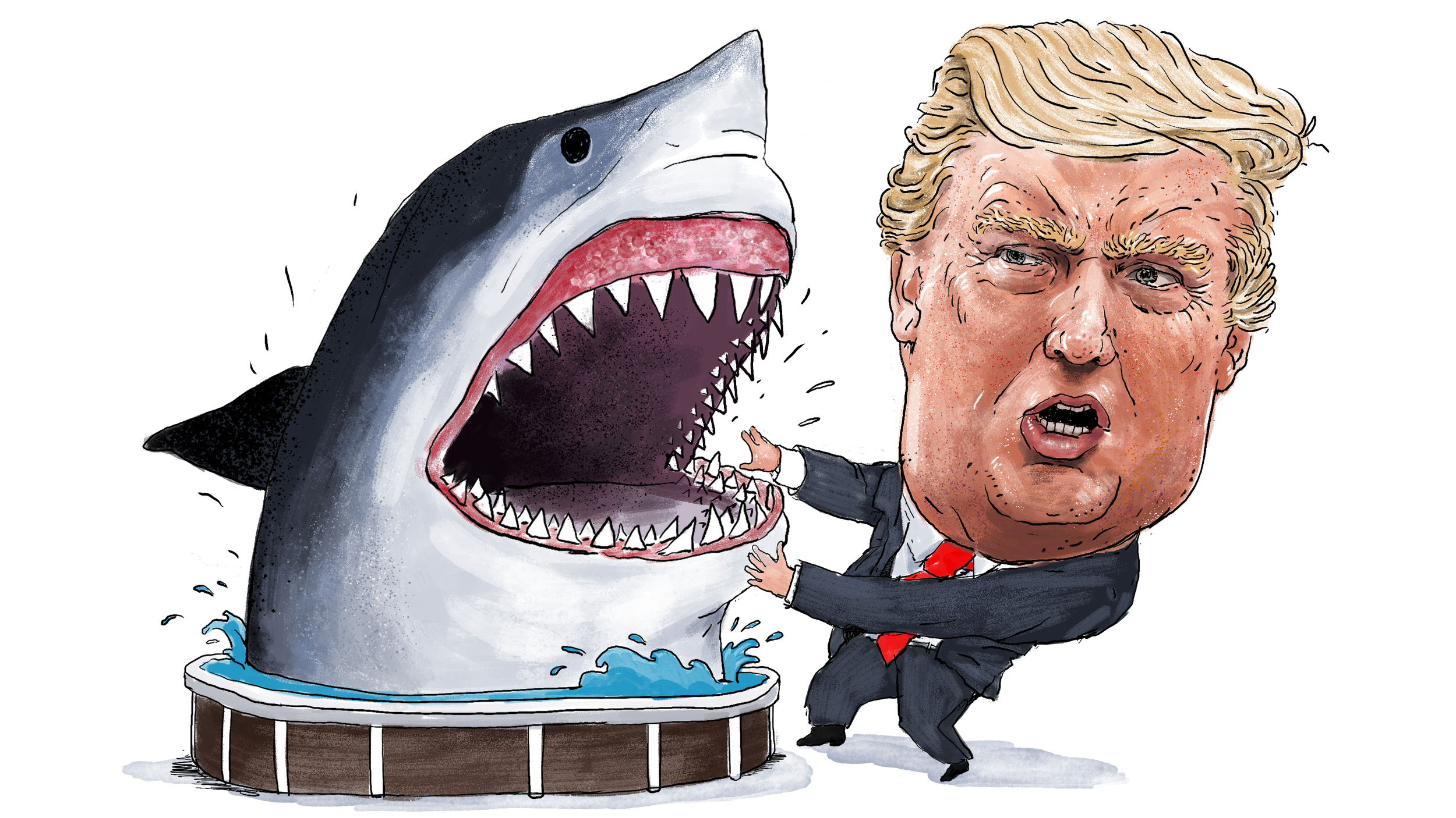 What Does Donald Trump See When He Looks at the Sharks?
