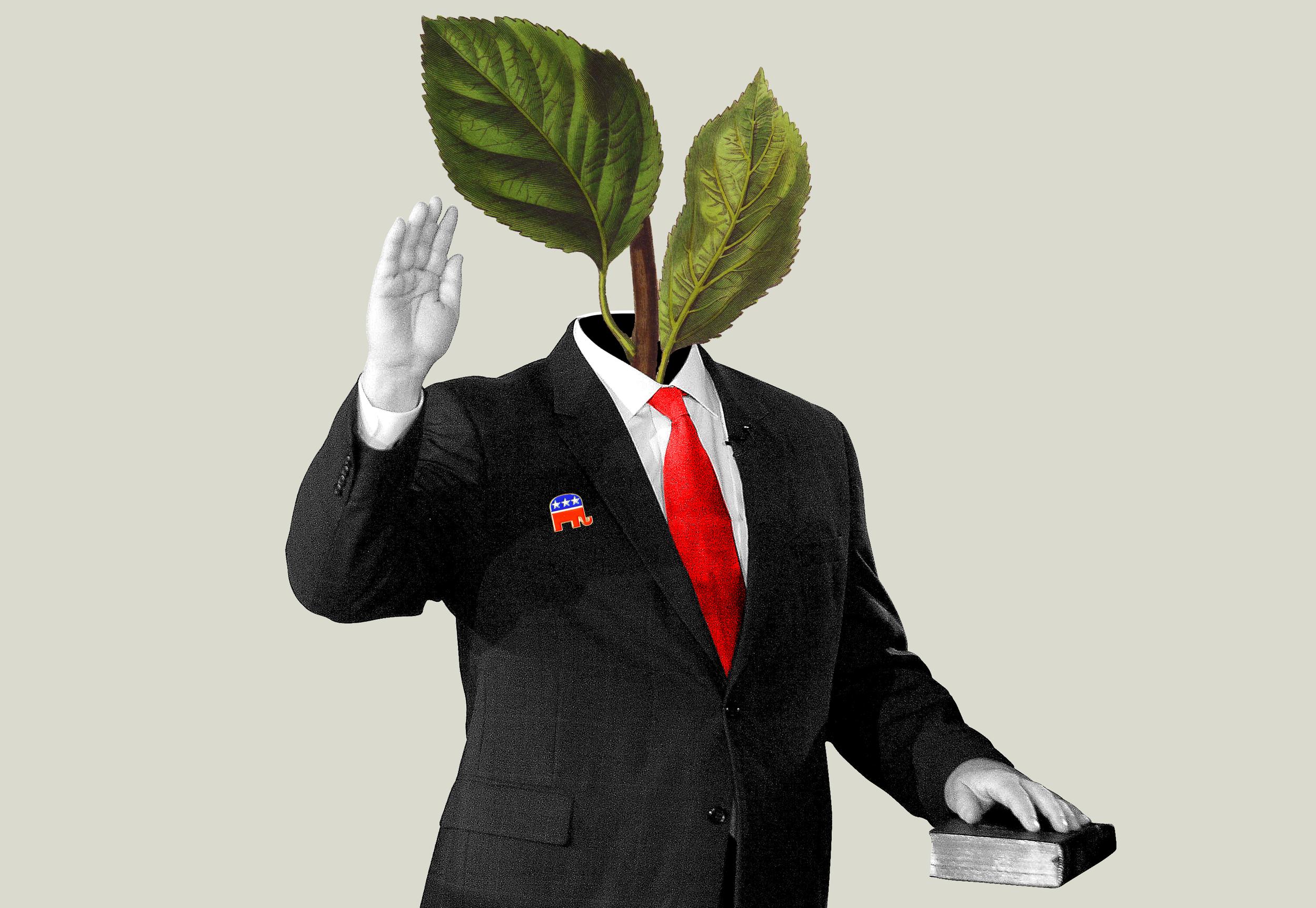 green-evangelist.png