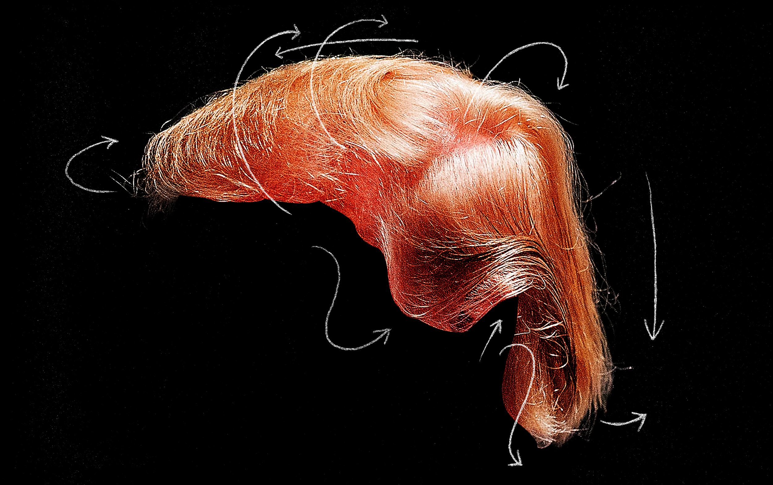 Trump-hair-2.png