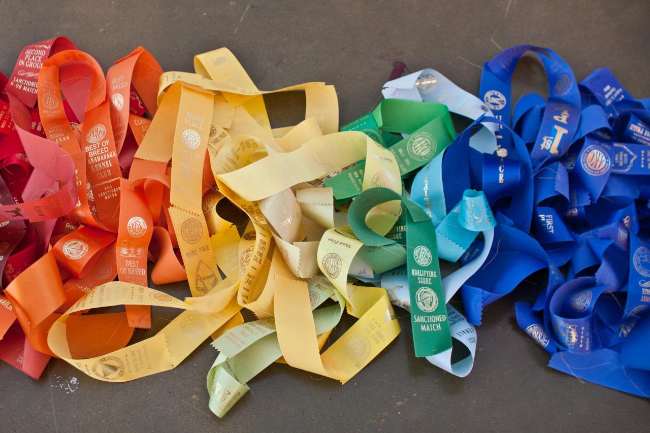 ribbon9.jpg