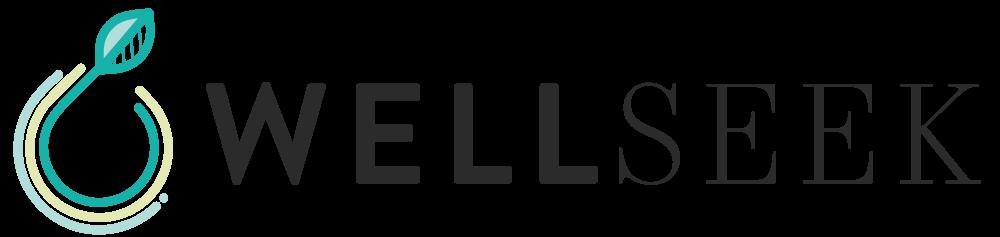 Wellseek_logo.png