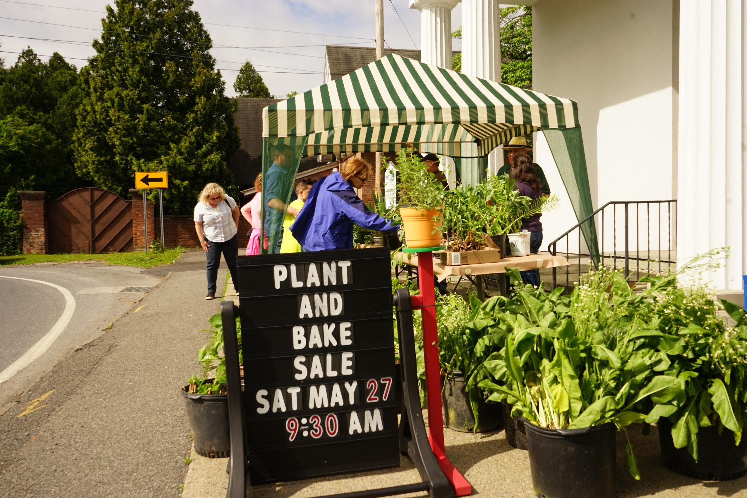 Plant Sale-14.jpg