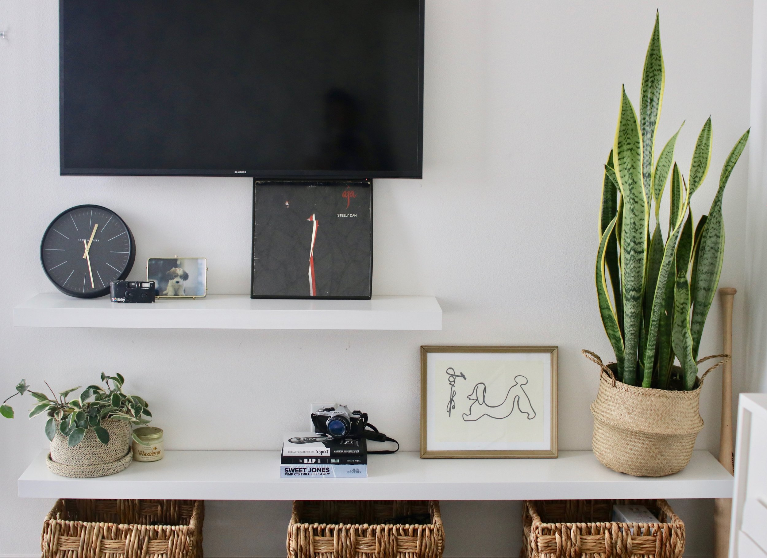 Clean shelves with various art, TV and plants.