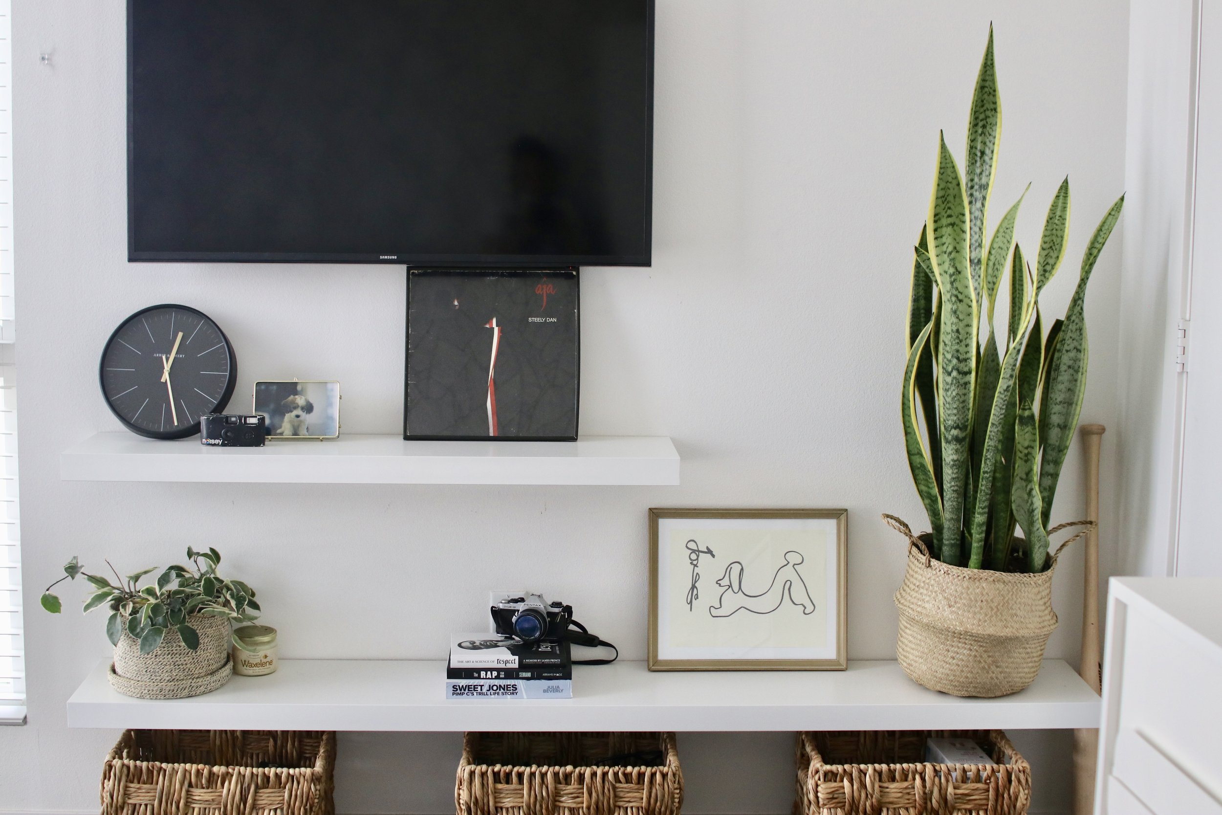 TV and shelf minimal decor