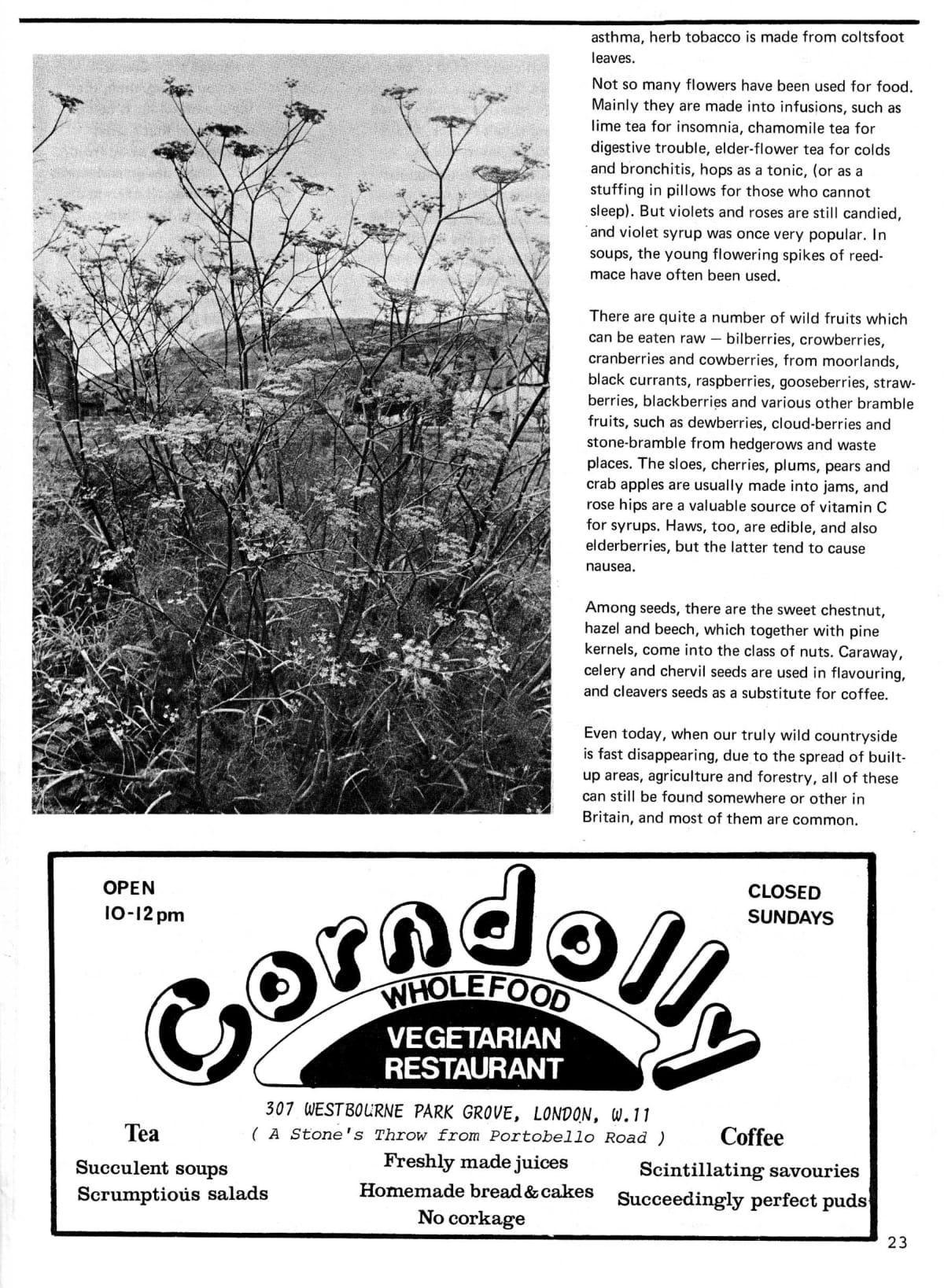 seed-v2-n4-april1973-23.jpg