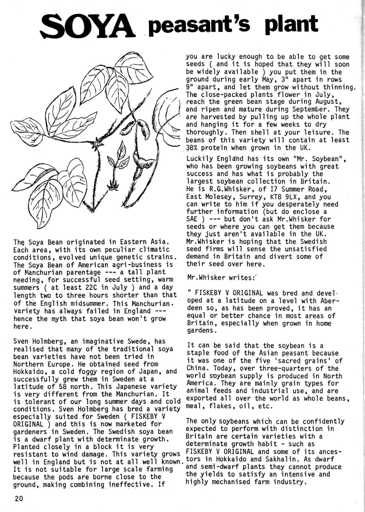 seed-v2-n6-june1973-20.jpg