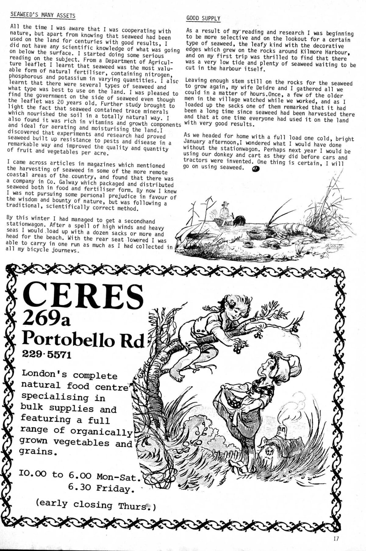 seed-v3-n4-april1974-17.jpg