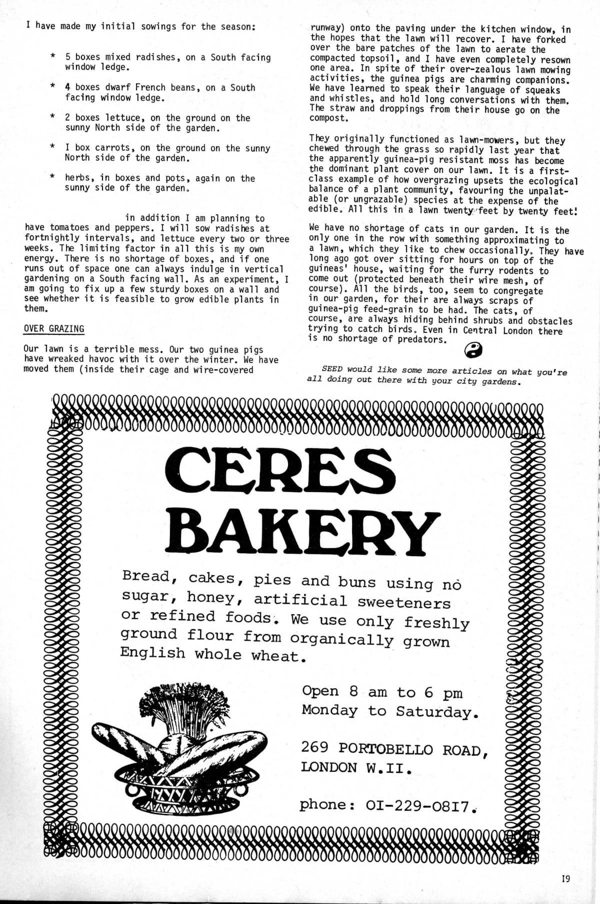 seed-v3-n5-may1974-19.jpg