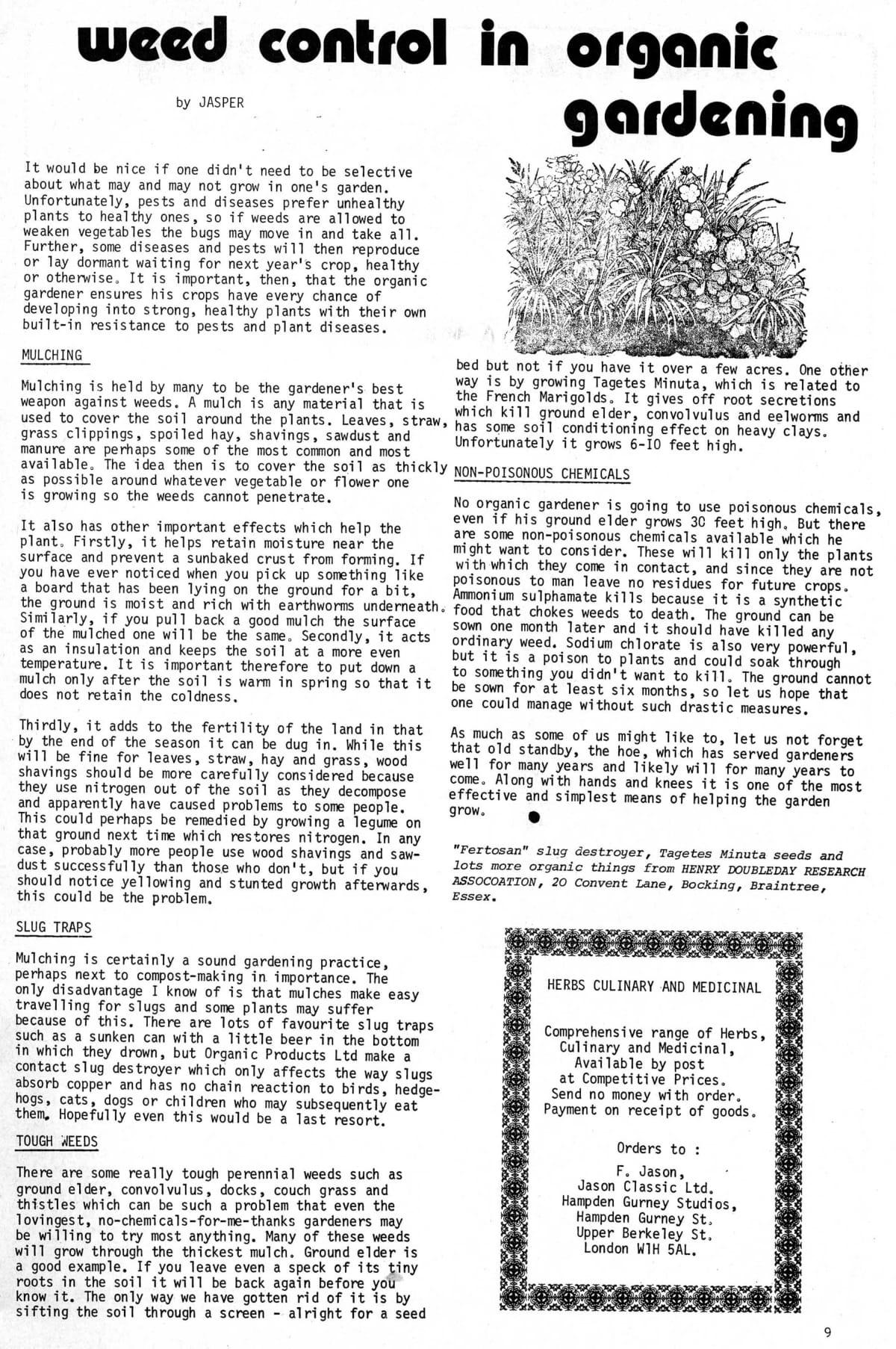 seed-v3-n6-june1974-09.jpg