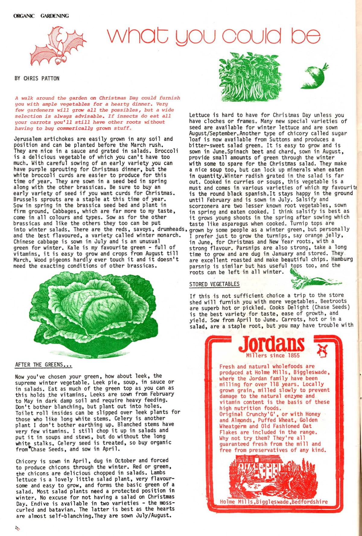 seed-v3-n11-nov1974-08.jpg