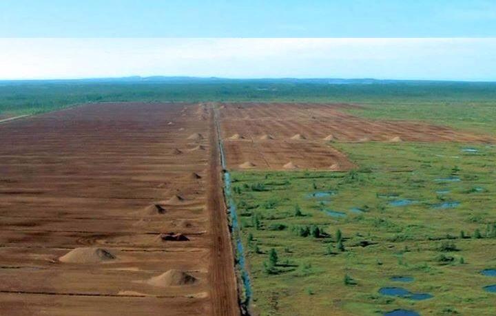 peat mines.jpg