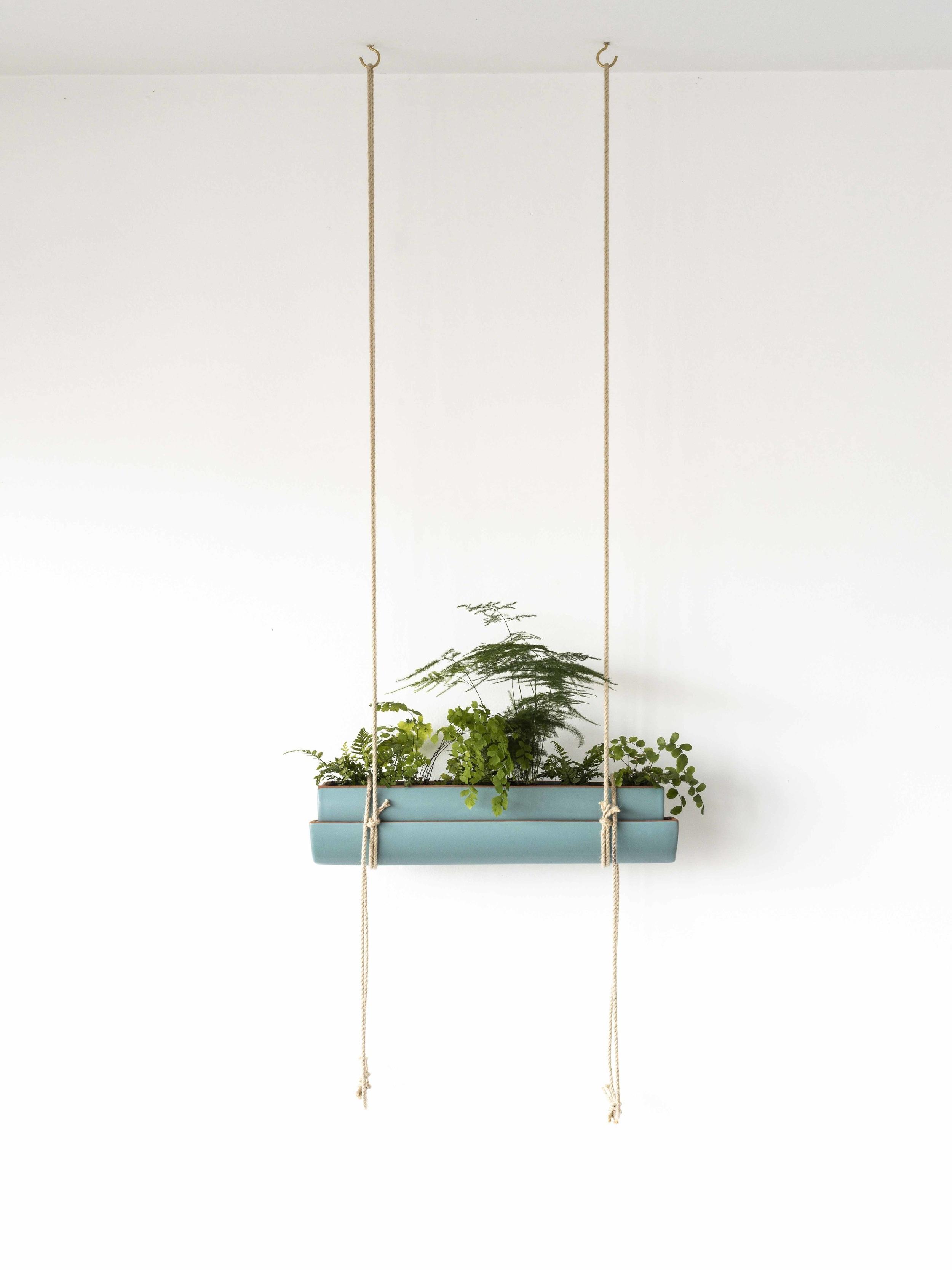 jardinieres-suspendues-plafond.jpg