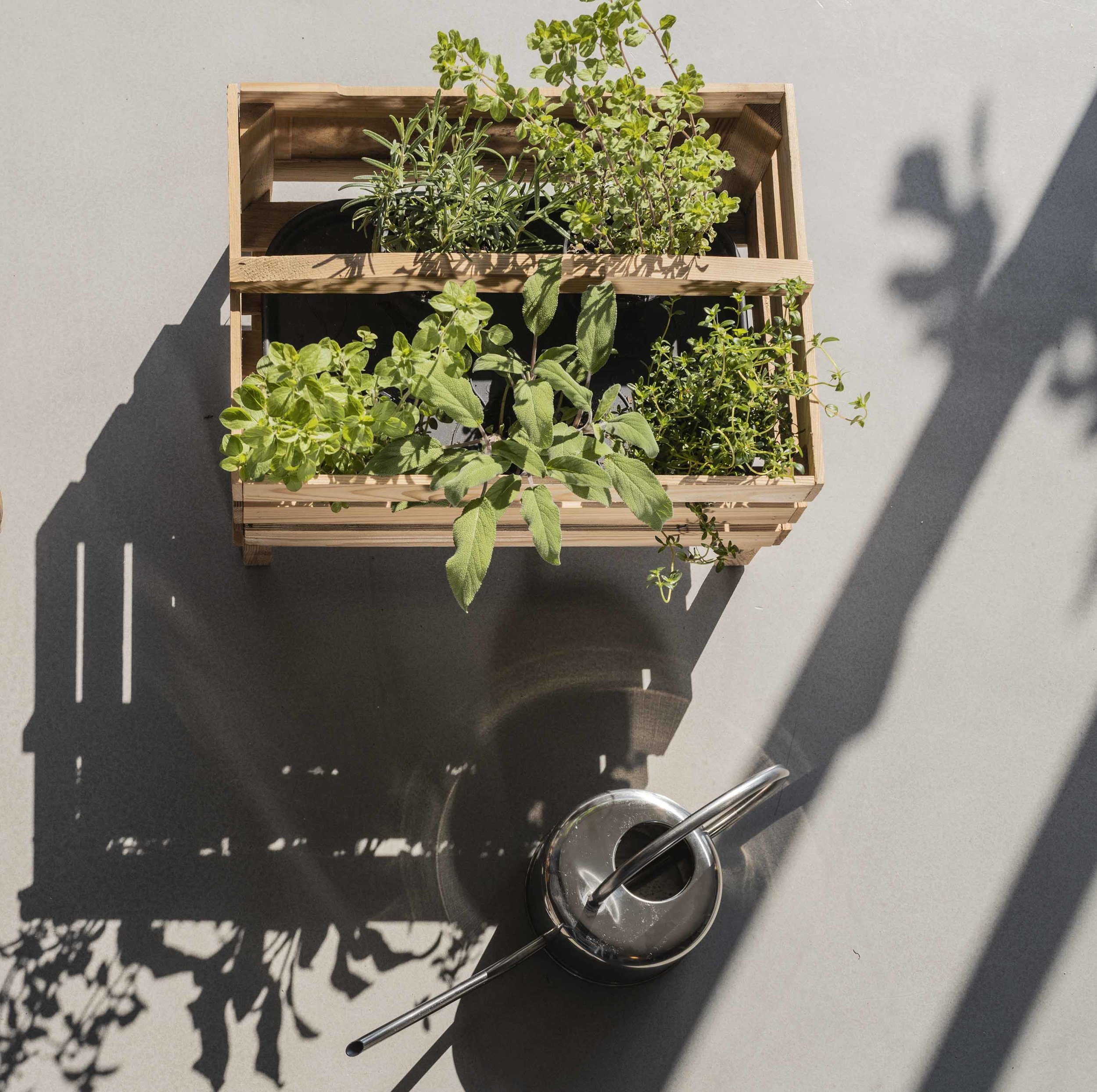Créez votre jardin personnel à chaque saison -