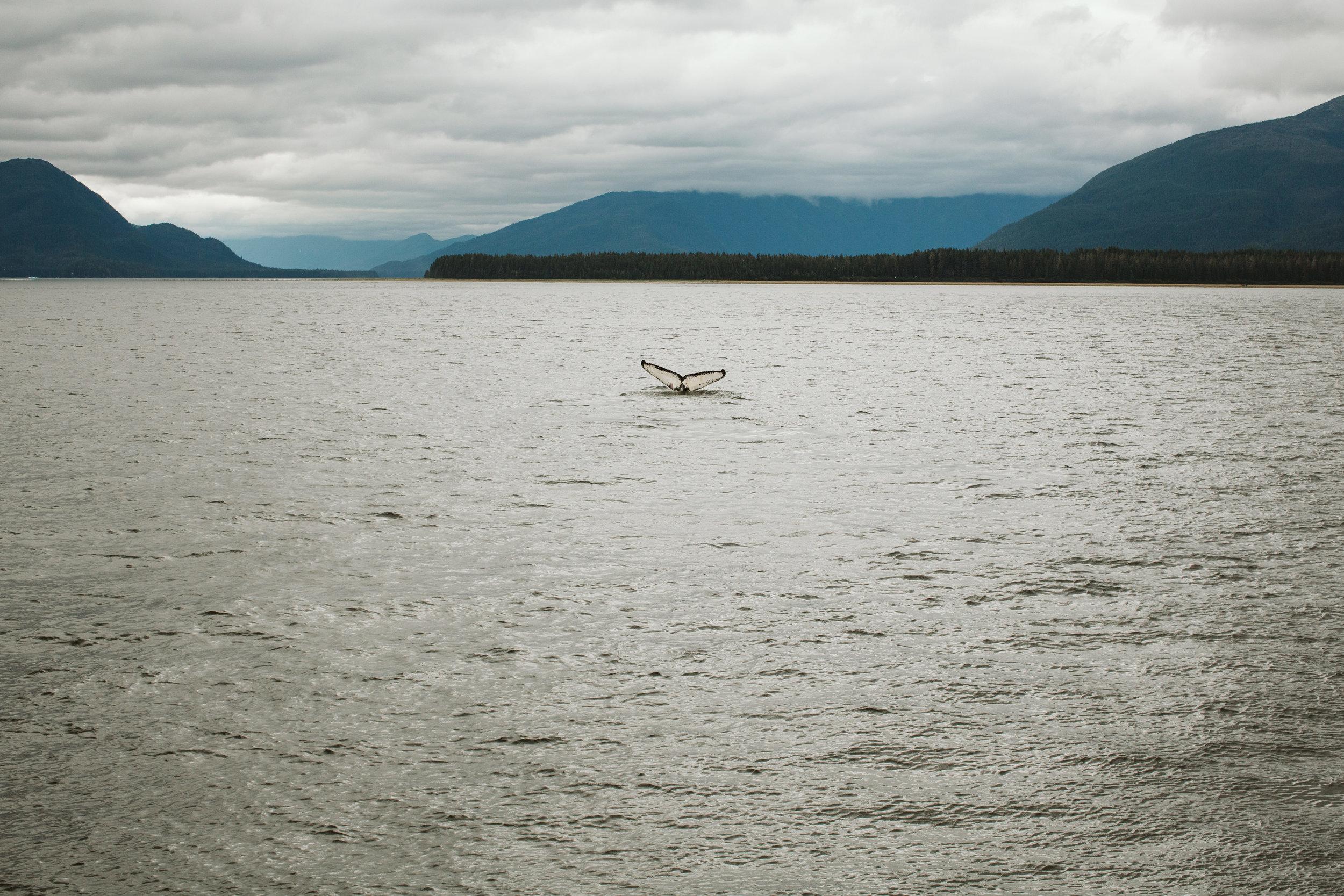 Engagement_Southern Oregon_Cruise_Alaska_Couple (3 of 4).jpg
