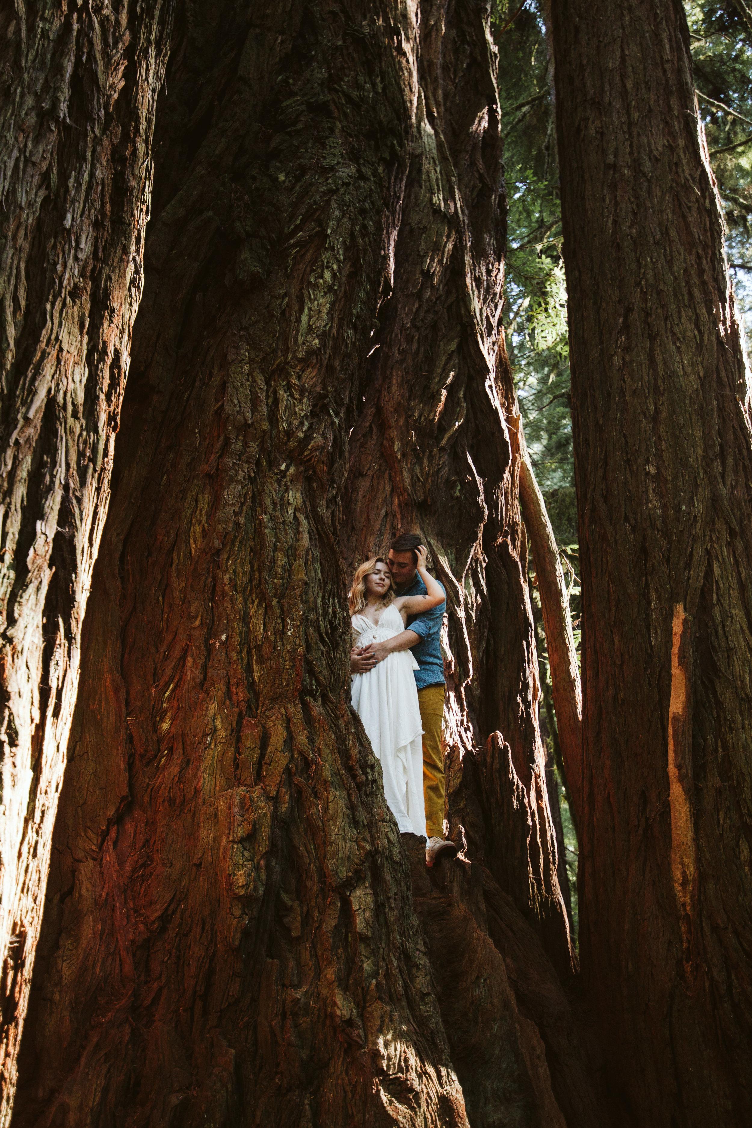Hannah&Ben_Redwoods_Elopement_Engagement_PNW_SouthernOregon_NorthernCalifornia_ (12 of 23).jpg