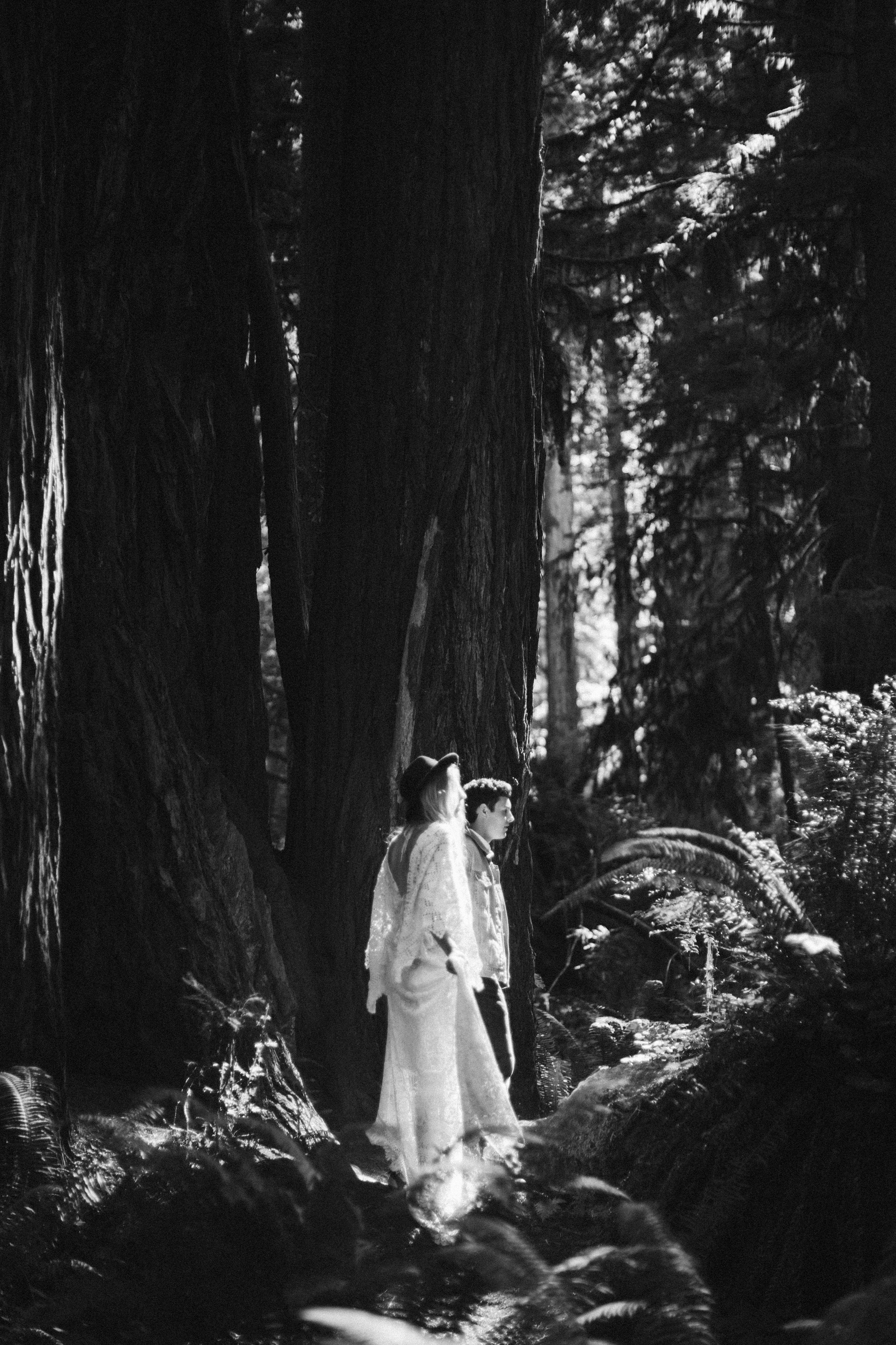 Redwoods_Elopement_Engagement_PNW_SouthernOregon_NorthernCalifornia_ (5 of 42).jpg