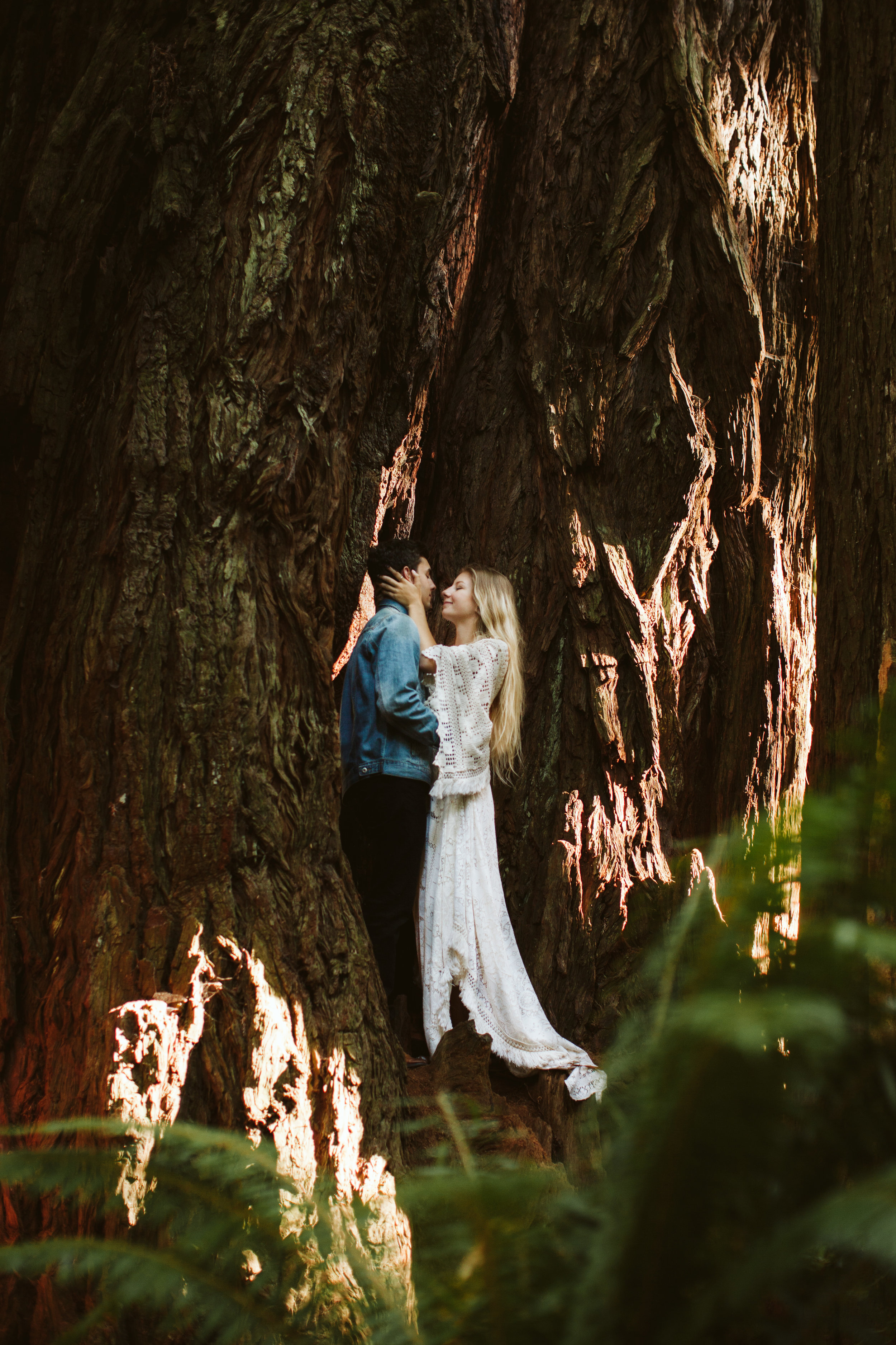 Redwoods_Elopement_Engagement_PNW_SouthernOregon_NorthernCalifornia_ (32 of 42).jpg