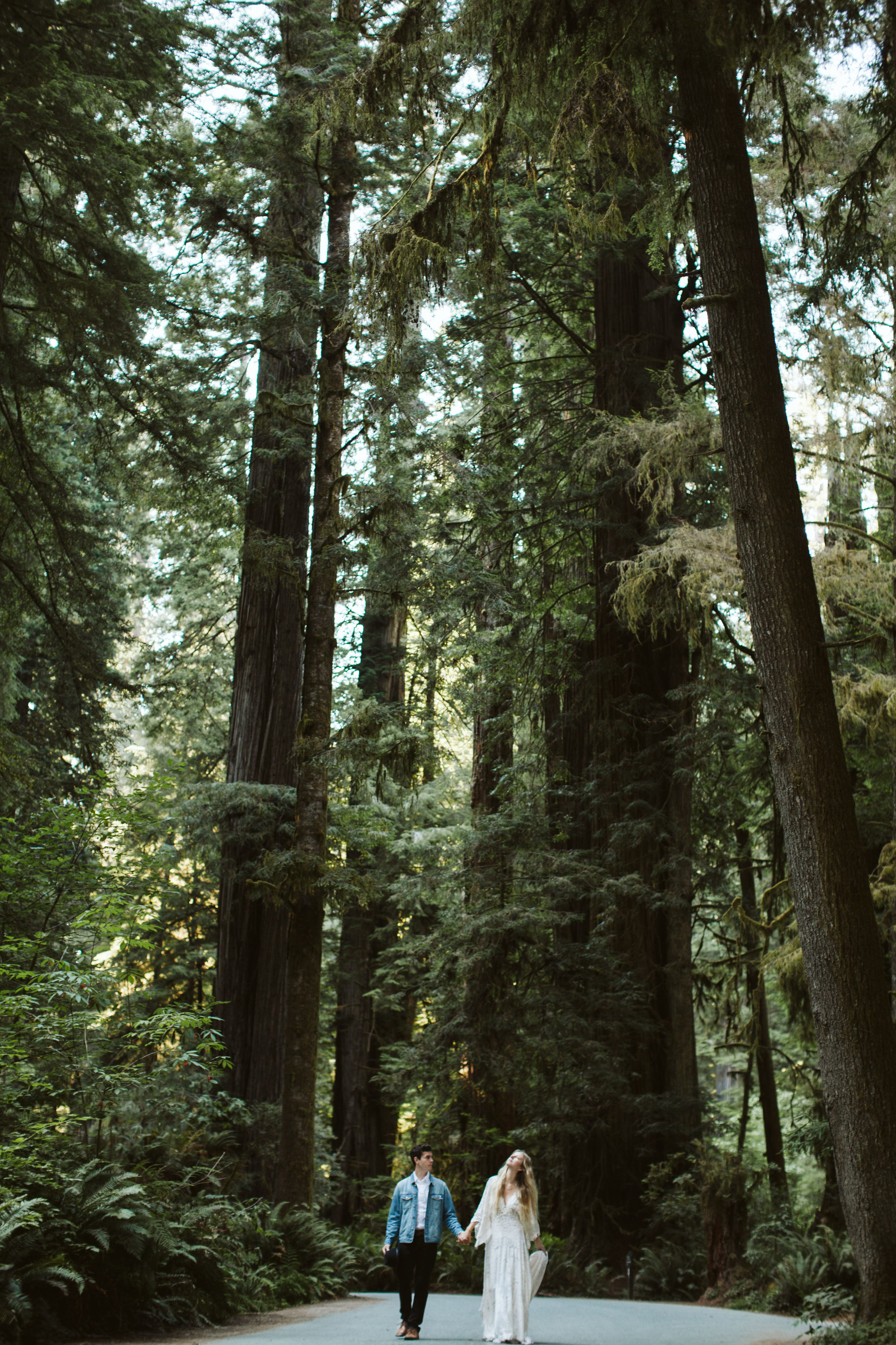 Redwoods_Elopement_Engagement_PNW_SouthernOregon_NorthernCalifornia_ (40 of 42).jpg