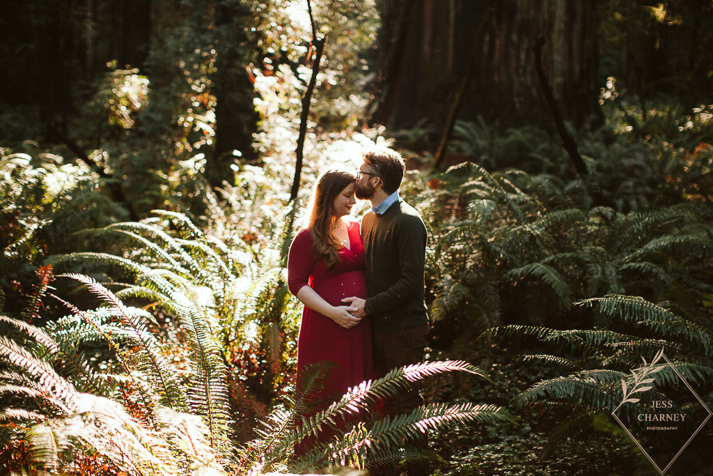 Maternity Shoot in the Redwoods | Southern Oregon Photographer