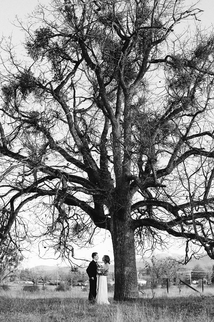 Bride and Groom under a tree | Southern Oregon Wedding Photographer
