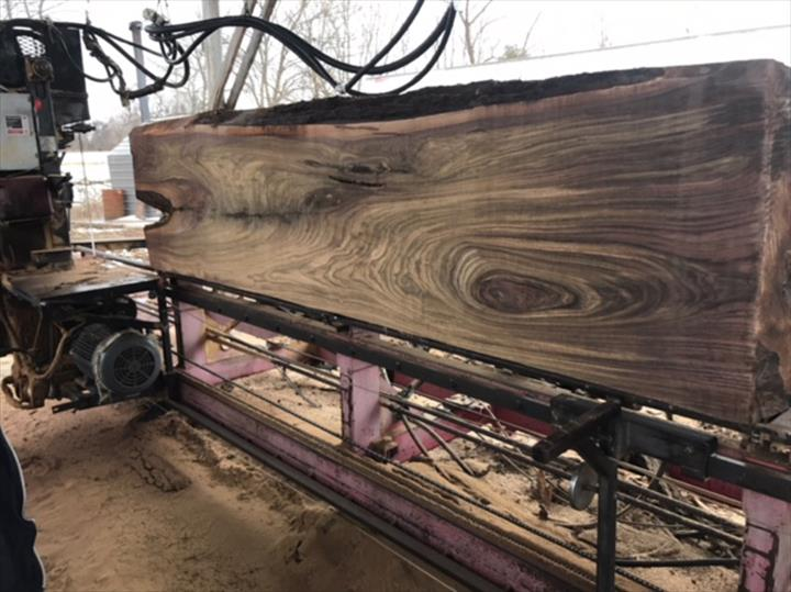 Wide, Live Edge Boards