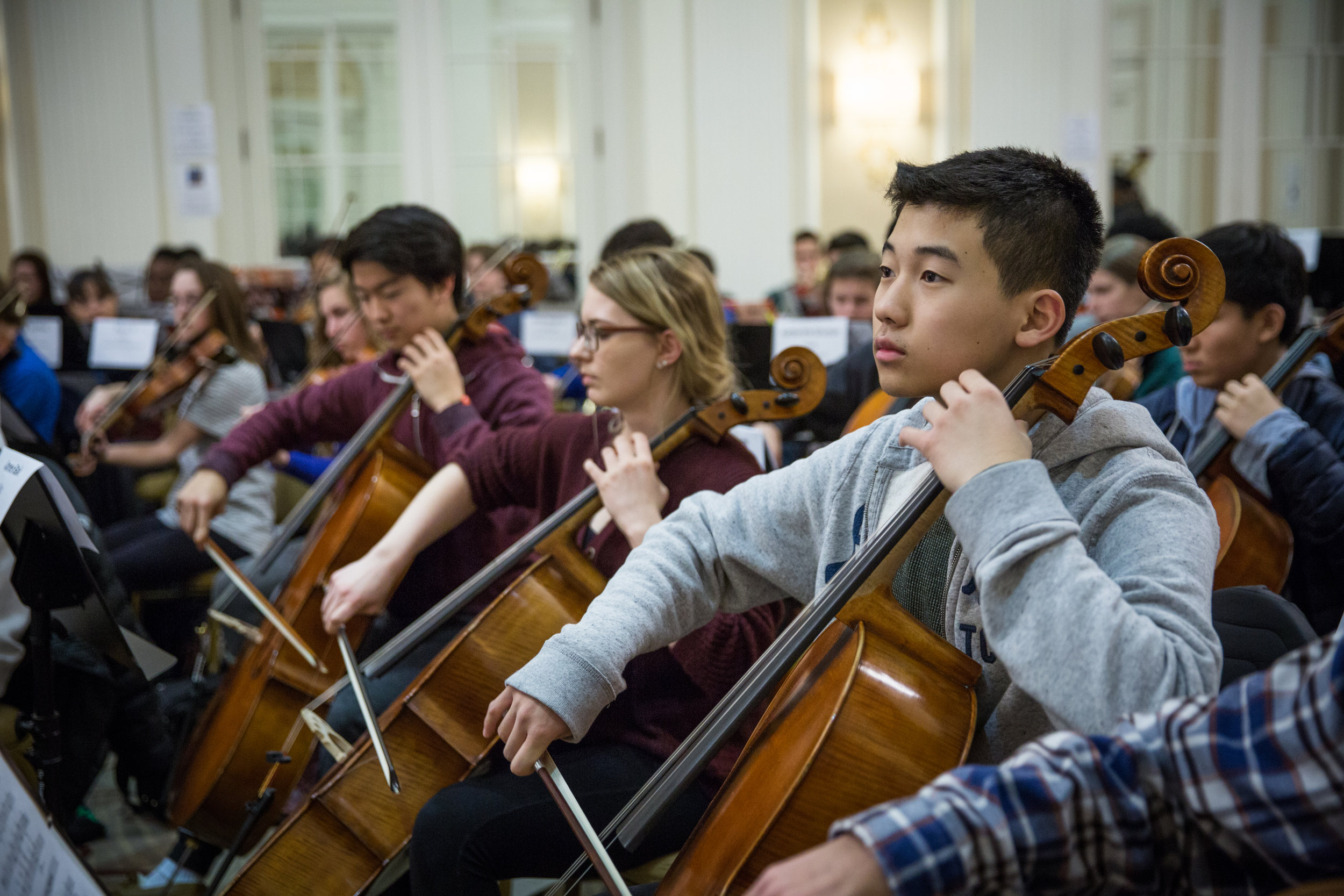 Male cellist engaged during All-State orchestra rehearsal; click through to All-State Orchestra Information page