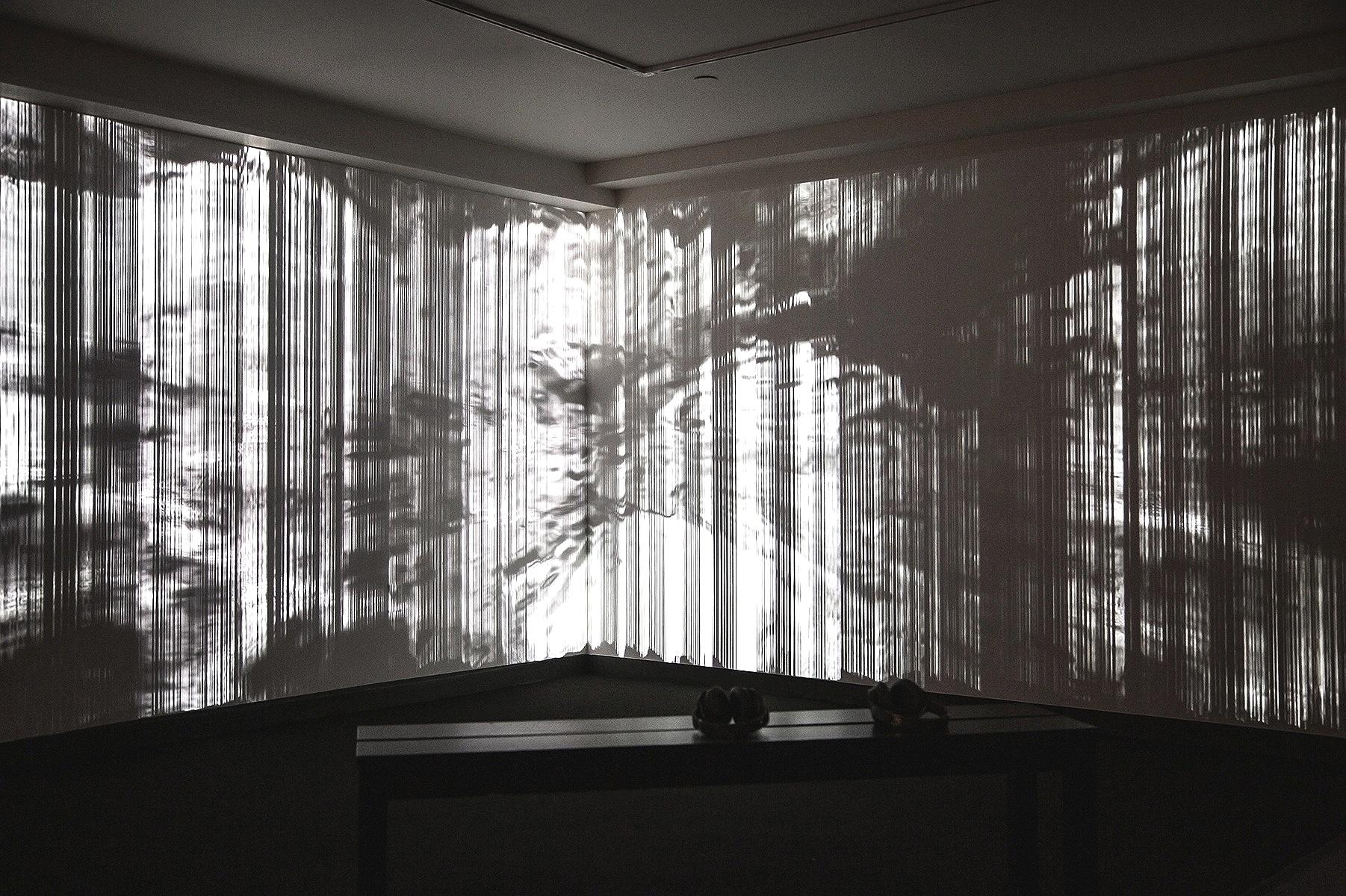 Installation photo, Fridman Gallery, New York, US, 2019