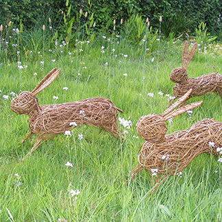 Willow Hares.jpg