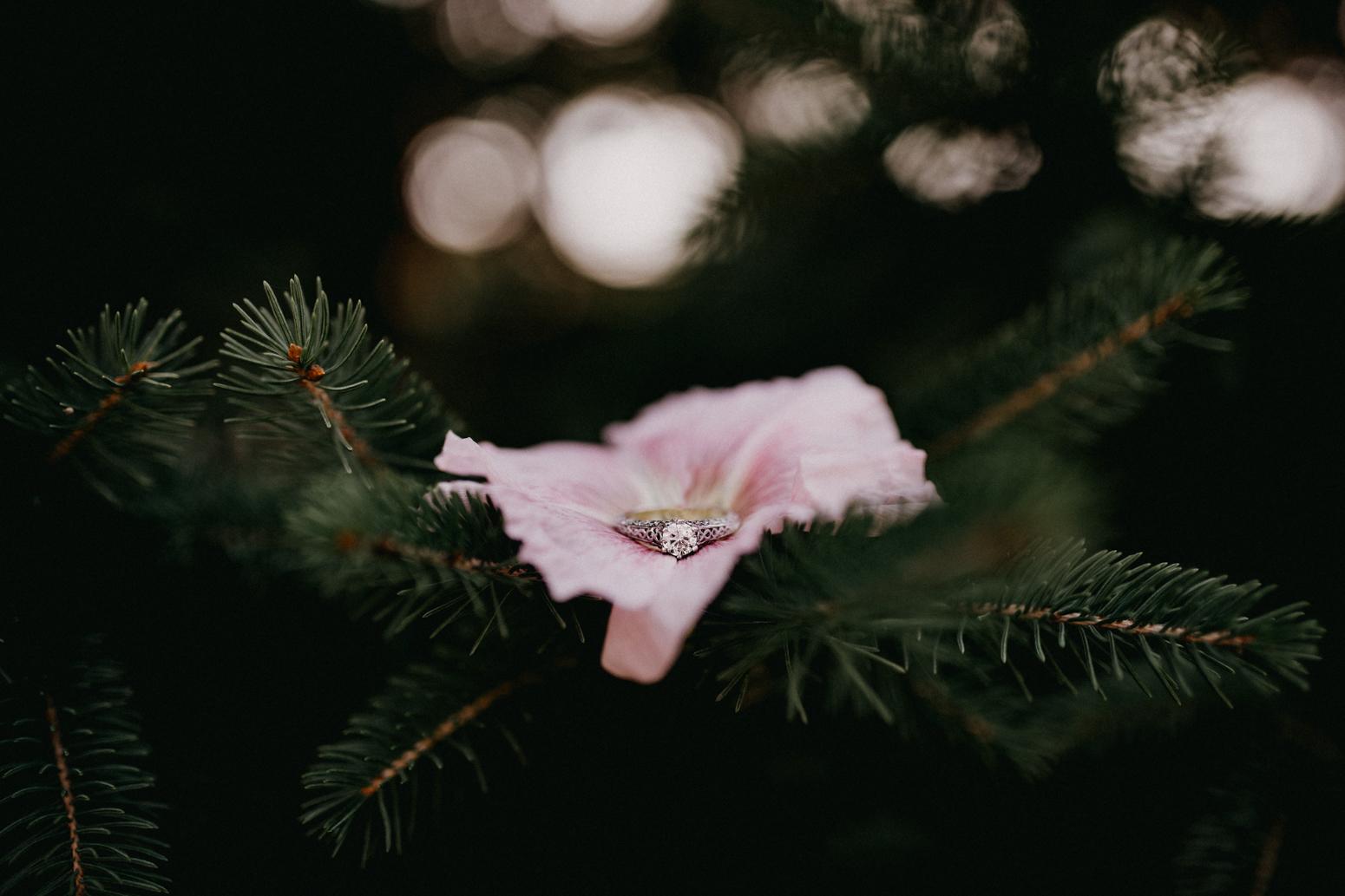 Rochester, NY Wedding Photographer (7 of 149).jpg