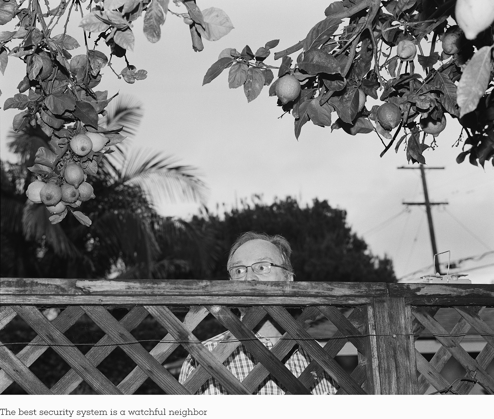 The best security system is a watchful neighbor.jpg