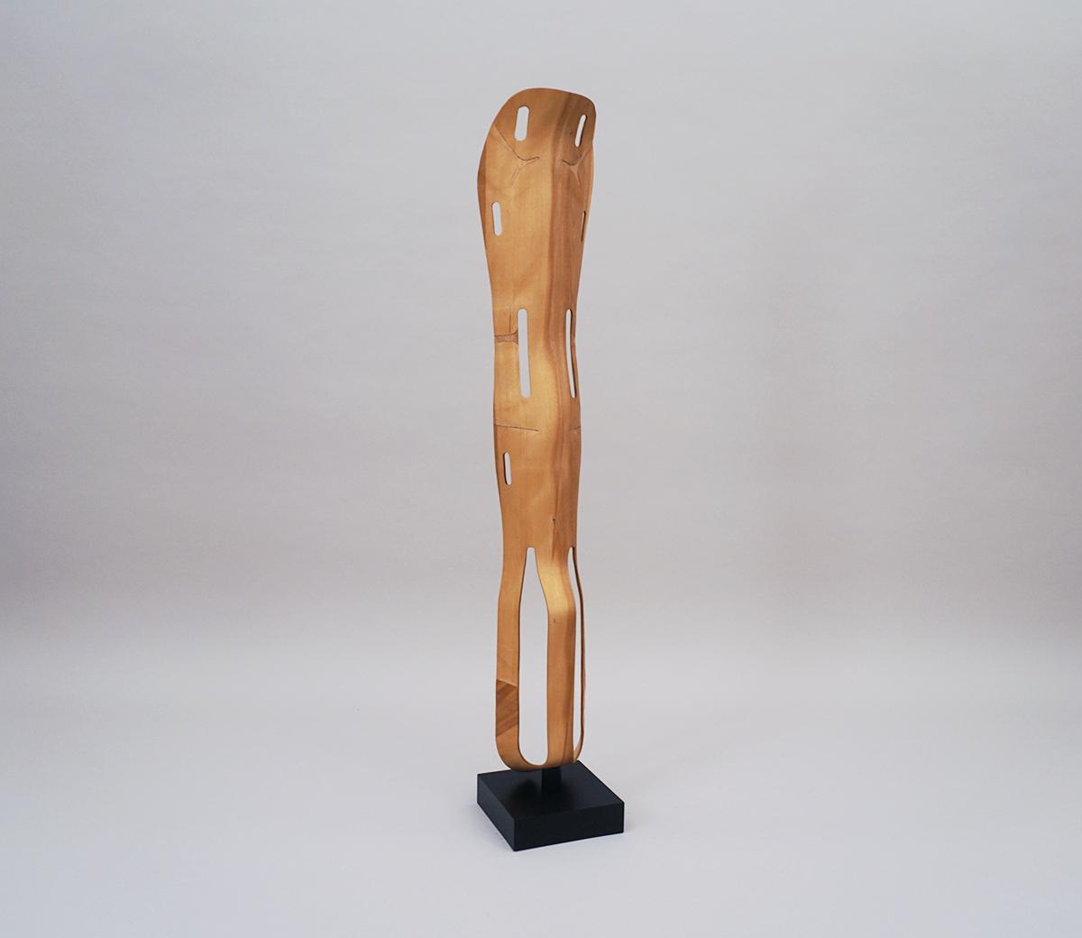 eames-leg-splint