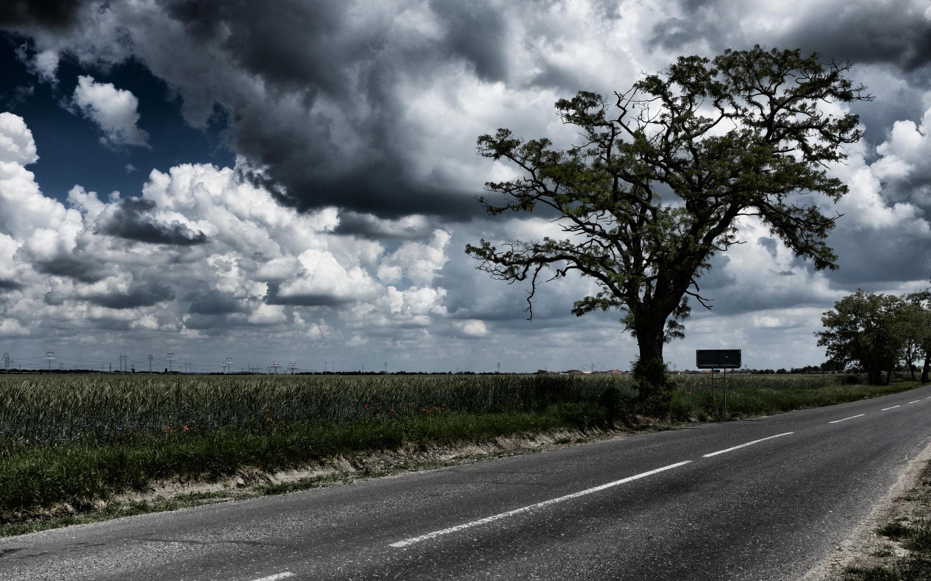 cloudy-field-2.jpg