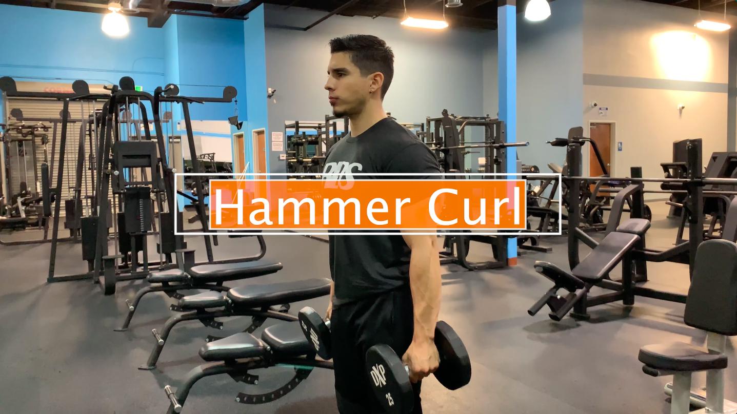 hammercurl.png
