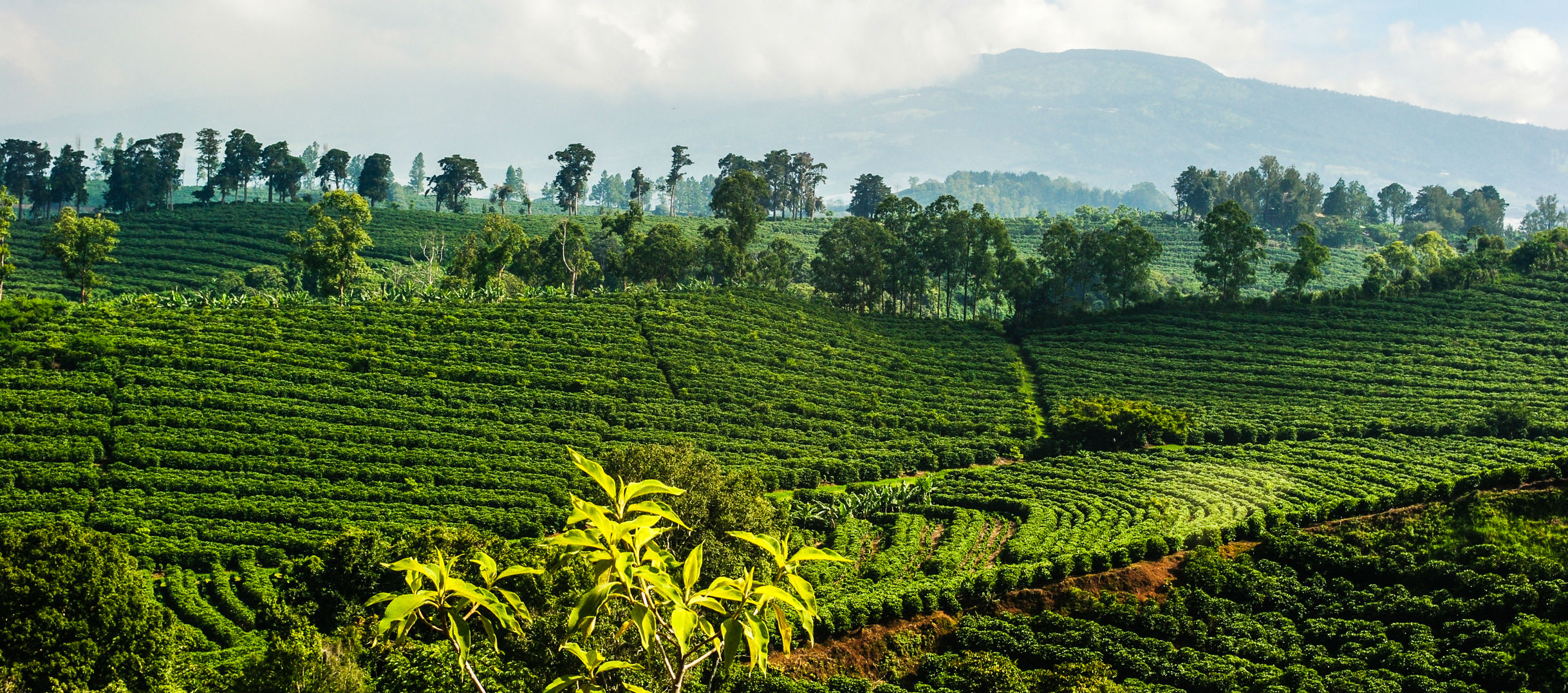Costa-Rica2.jpg