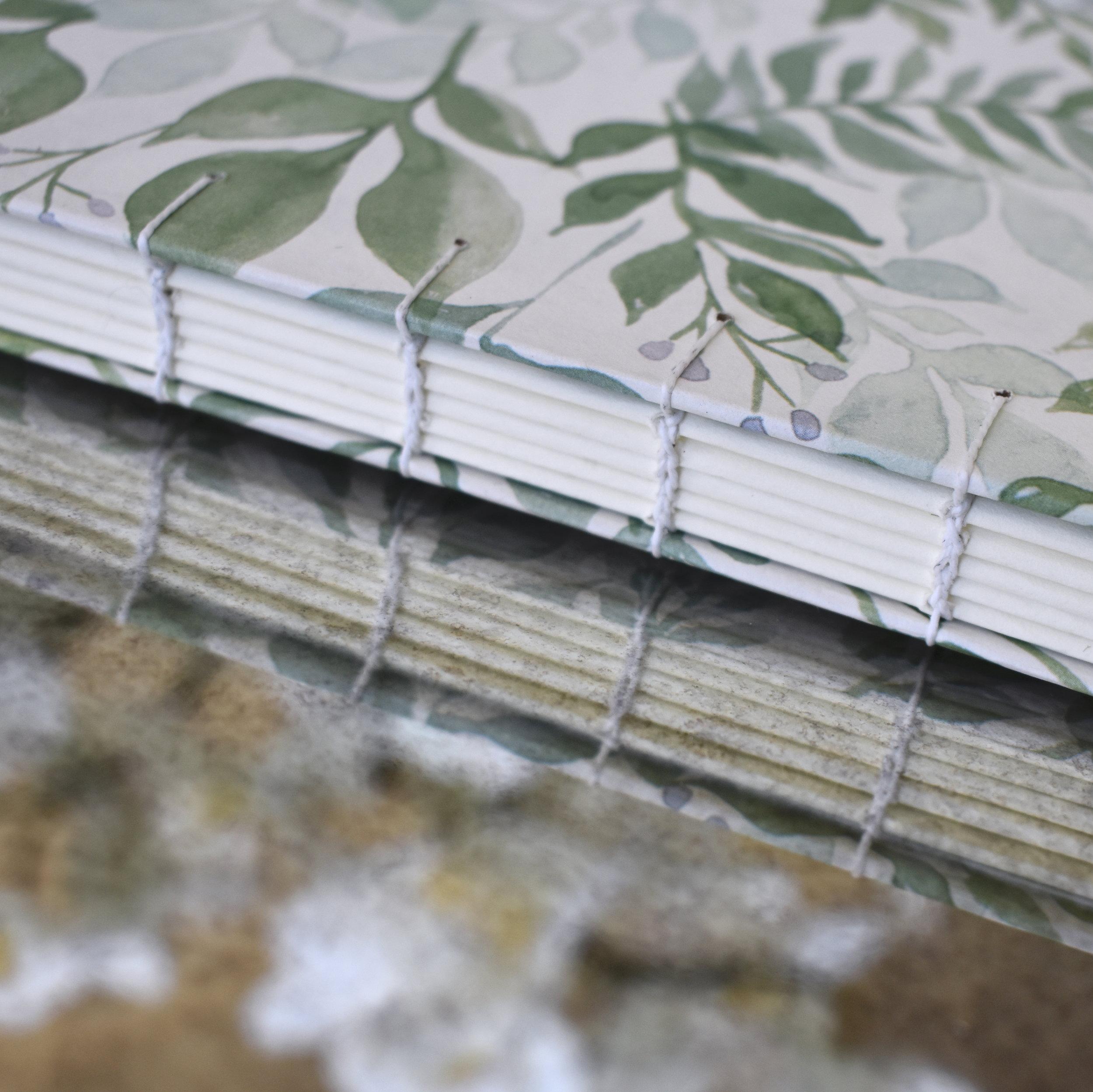 Watercolor plant book, 2019