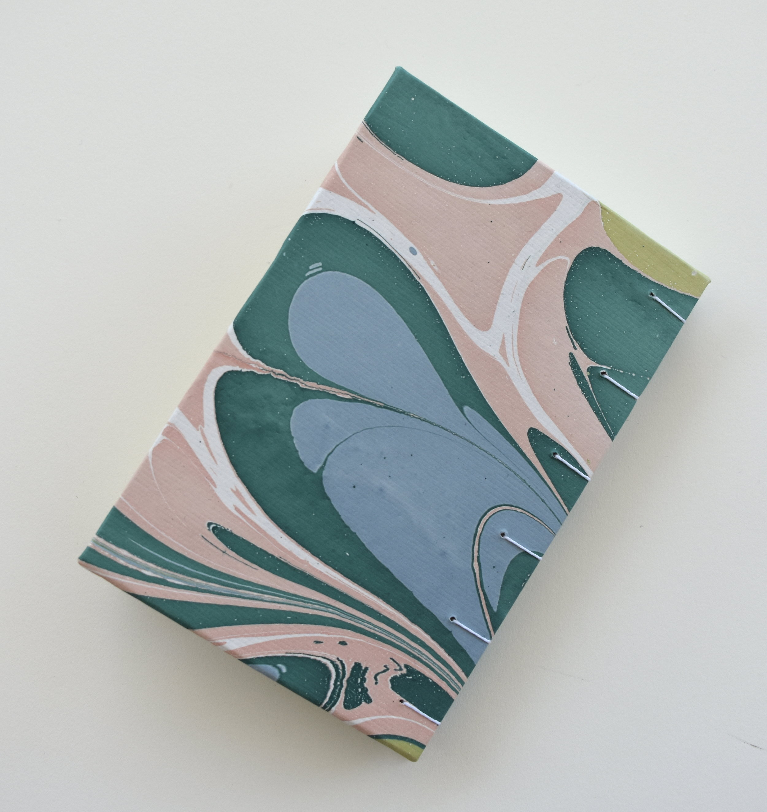 Small Teal and Pink book, 2019