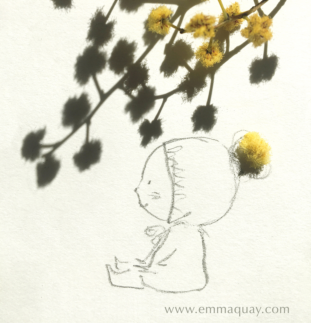 Wattle pompom #emmaquaysketchbook