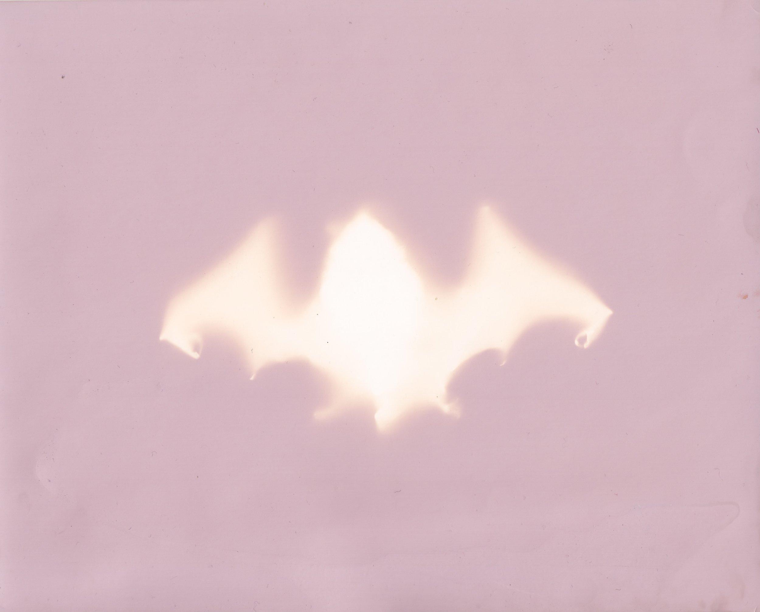 Bat III - 2018