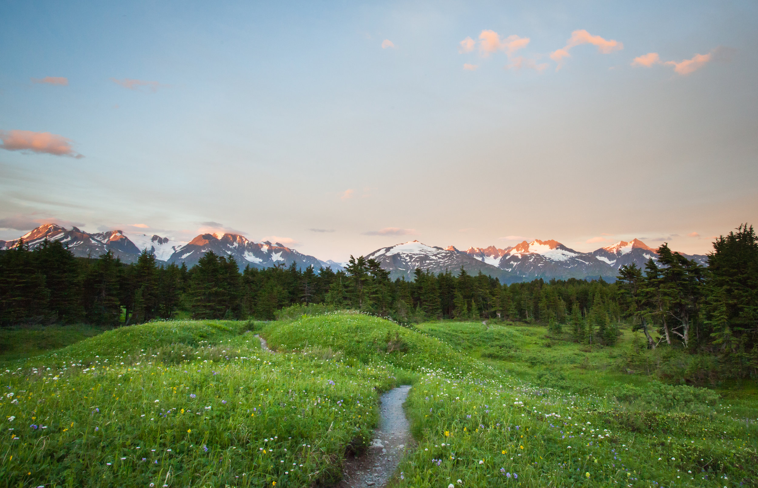 Seward Travel Packages