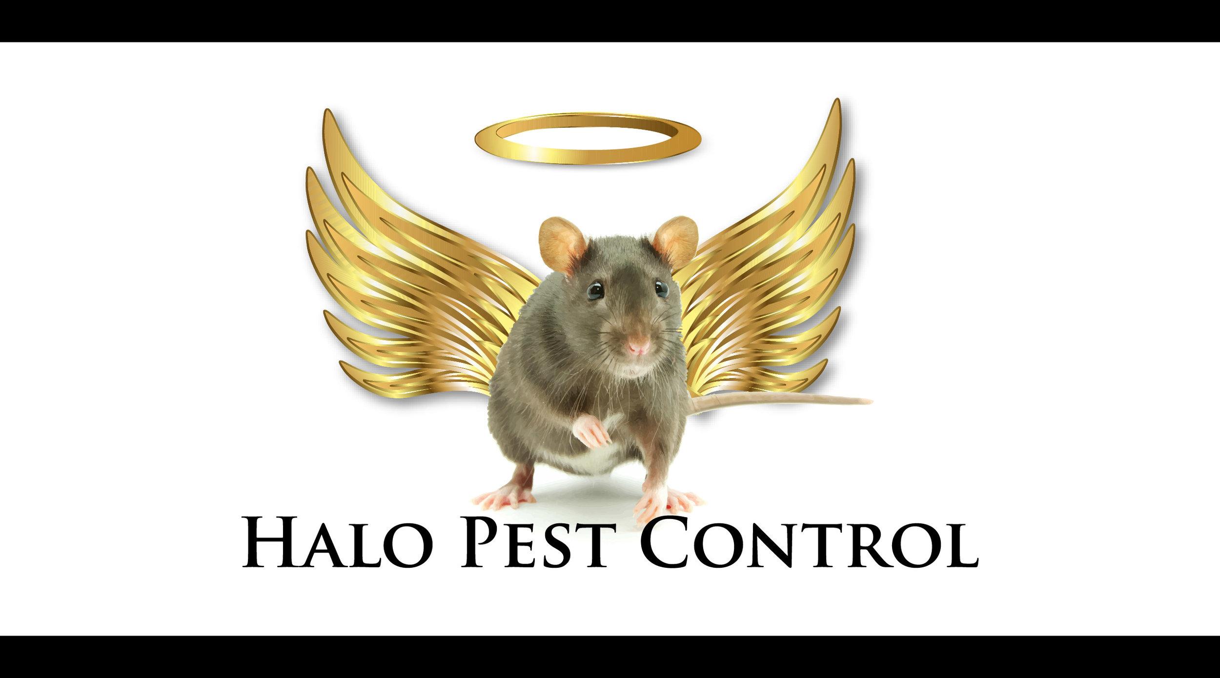 Halo Pest Control Logo Complete.jpg