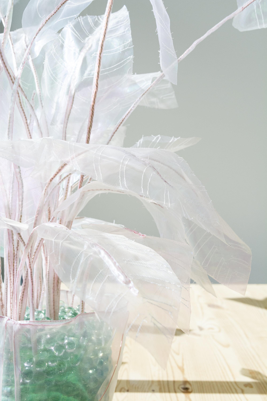Plant - Joyce Overheul, Plant, 2017 (detail)handgemaakte 1:1 replica van echte plant, organza, glazen knikkers, ca. 90 x 75 x 20cm, uniek€ 570,- incl. btw, certificaat van authenticiteitDit is een speciale prijs die met toestemming van de kunstenaar alleen door Lauwer wordt gehanteerd.