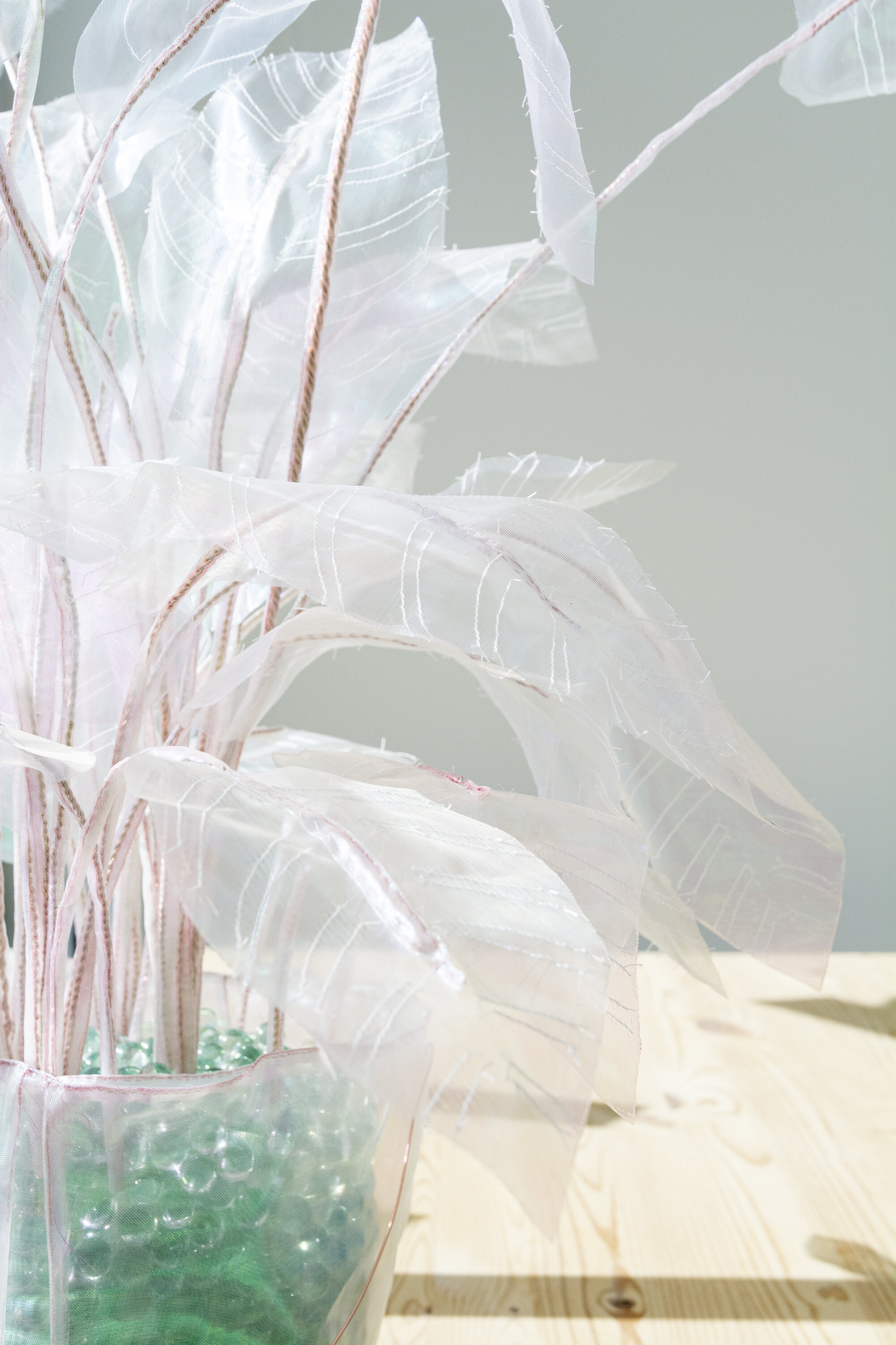 Plant - Joyce Overheul, Plant, 2017 (detail)handmade 1:1 replica of real plant, organza, glass marbles, ca. 90 x 75 x 20cm, unique€ 570,- incl. VAT, certificate of authenticityThis is a special price maintained only by Lauwer with the artist's consent.