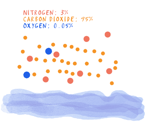 The Earth's Early Atmosphere - mainly carbon dioxide, but with some oxygen and nitrogen