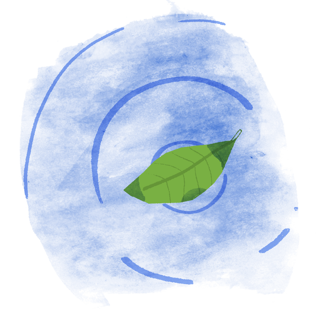 A leaf will stay still even as ripples (transverse waves) pass under it.